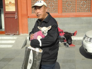 The relaxed one-child policy aims to slow China's ageing